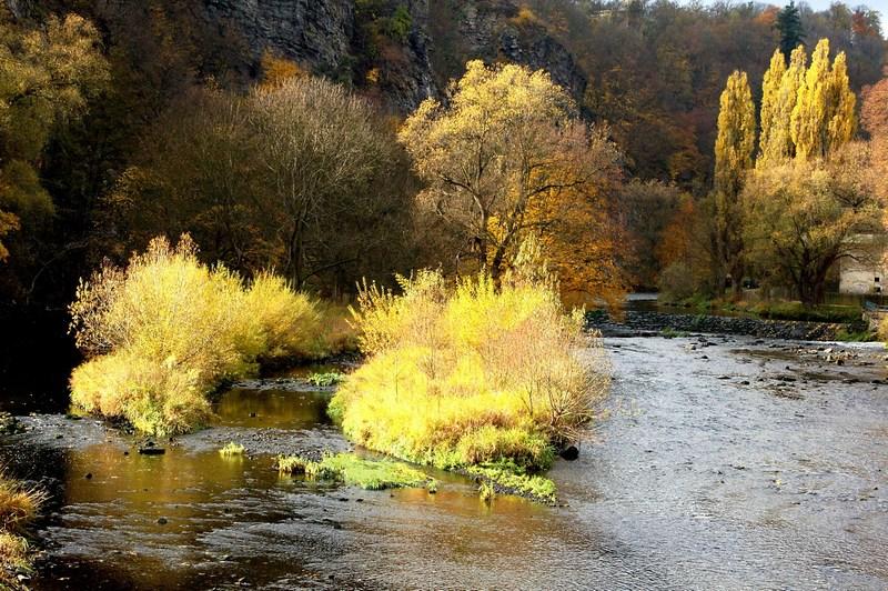 NP Podyjí - podzimní Dyje